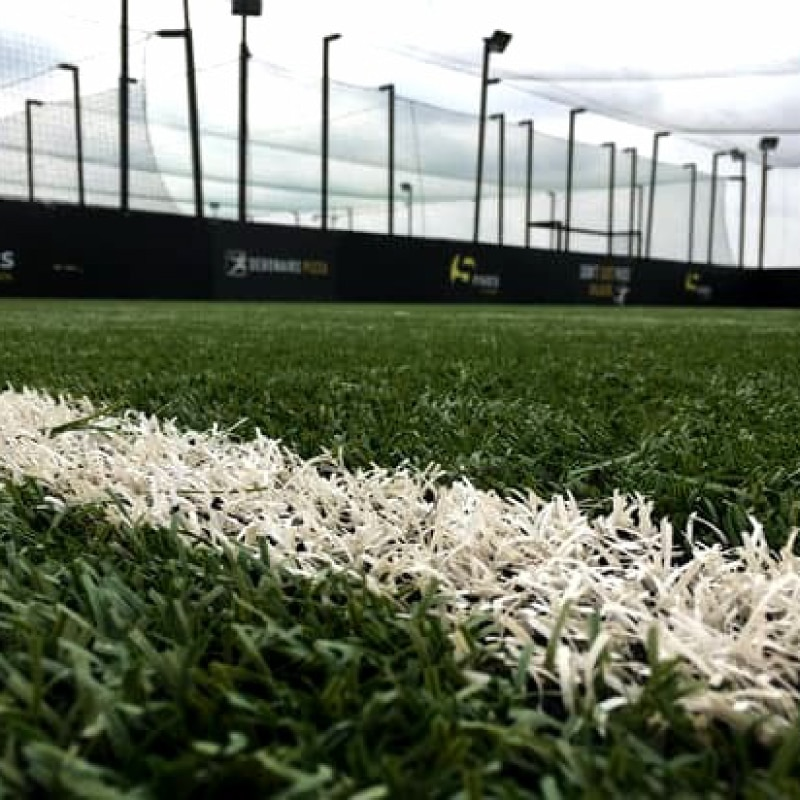 Natural & Synthetic Turf